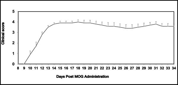 MOG-induced EAE_clinical score_MD Biosciences